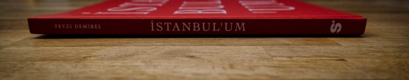 Seite - Istanbulu'um - Feyzi Demirel