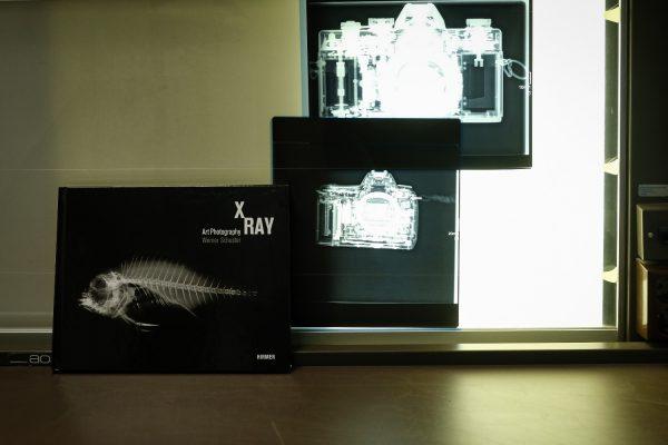 Titel - X-RAY - Werner Schuster